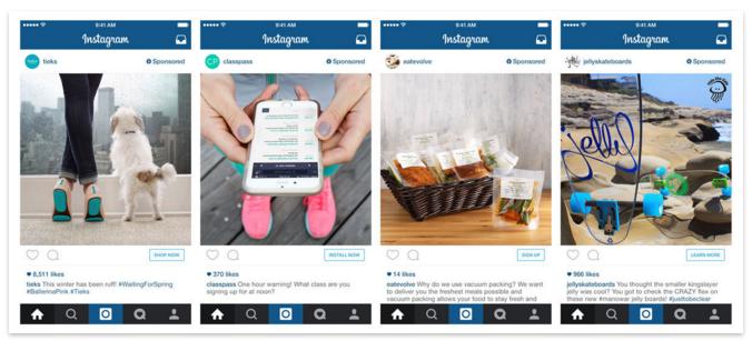 Roy_And_Teddy_Instagram_Buy_Button_Satin_Al_Buttonu